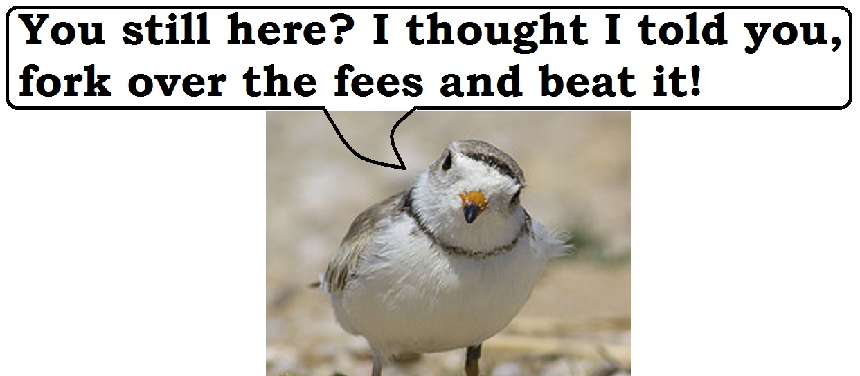 The Plovers are ripping us off!