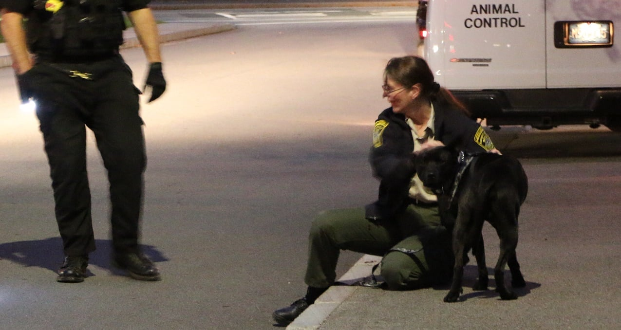 HN VIDEO: Patient allegedly threatened to sic his dog on emergency room staff… pet taken into animal control custody…